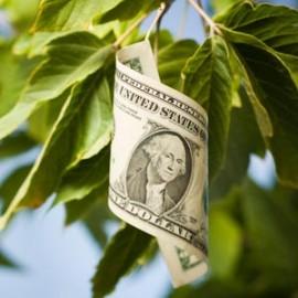 В чем плюсы и минусы франчайзинга?