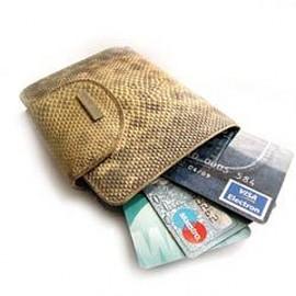 Как владельцу пластиковой карты не стать жертвой мошенников?